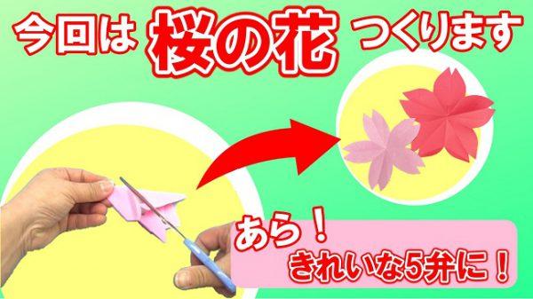【折り紙1枚で】桜の花に!子どもビックリ手品みたい!季節の創作
